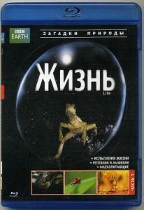 BBC Жизнь 1 Часть (Blu-ray)