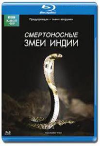 BBC Смертоносные змеи Индии (Blu-ray)
